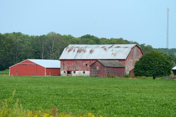Ontario Introduces Legislation to Protect Ontario's Farmers, Farm Animals and Food Supply
