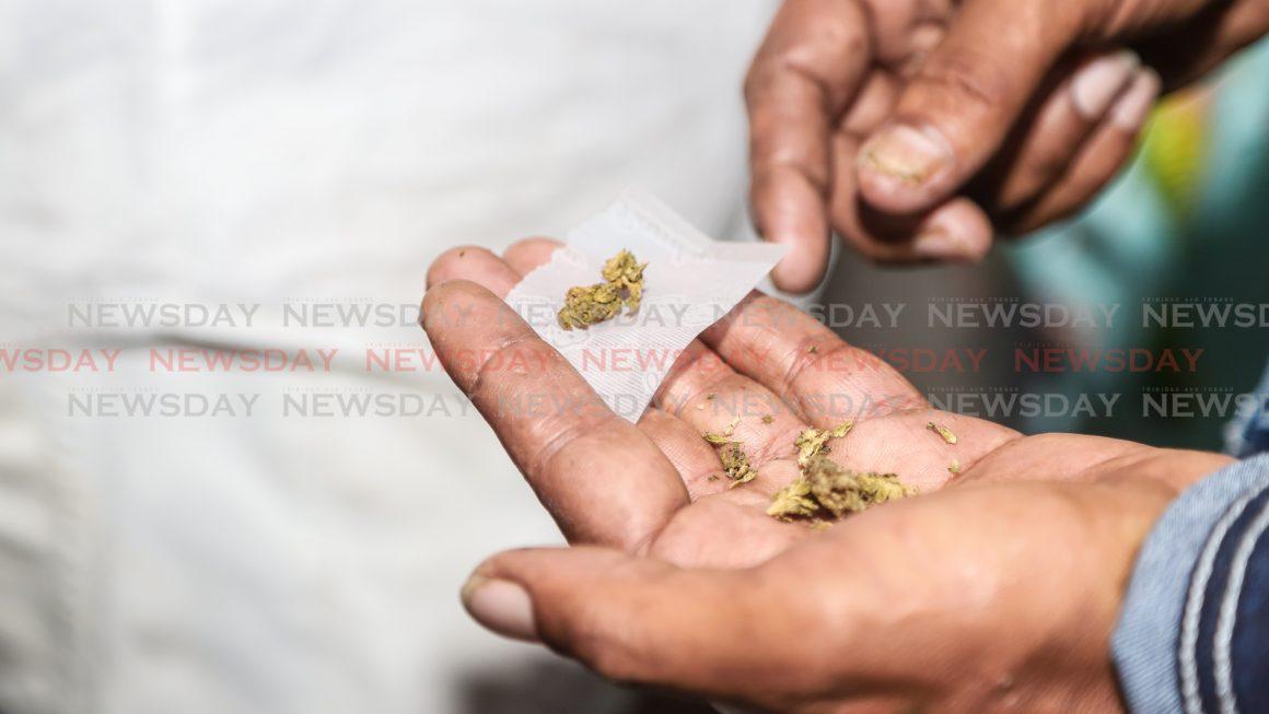 Engineering student held with marijuana