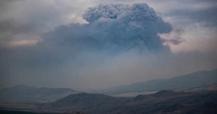 New solutions needed as exposure to wildfire smoke becomes regular occurrence: experts